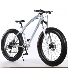 26' Elegant Fat Tyre Bike - 21 Speed (SILVER)